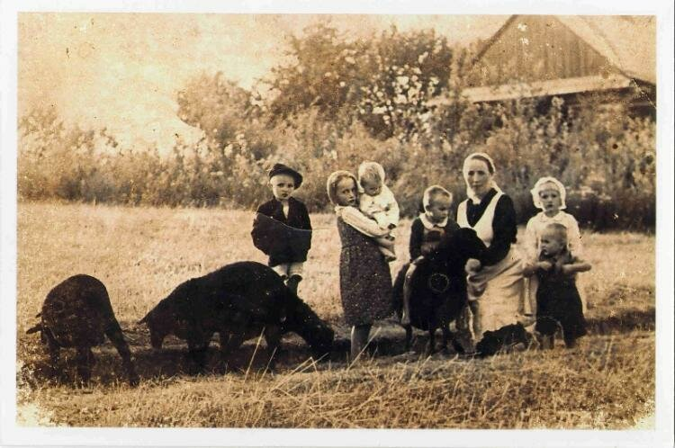 Niemiecki mord na rodzinie Ulmów