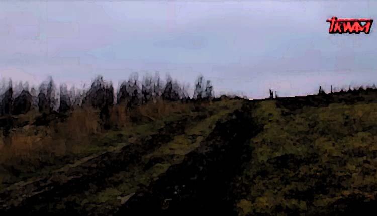 Pawłokoma – Gdzież są Ich groby Polsko!